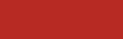 hairdis logo